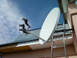 Как смотреть бесплатно спутниковое телевидение