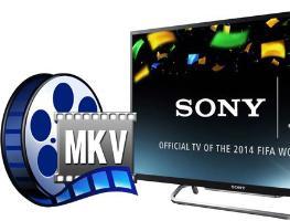 Как смотреть формат MKV на телевизоре